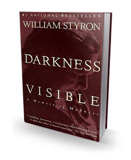 Noonan_Book Darkness Visible-1