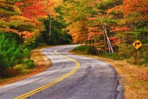 Winding-Autumn-Road